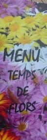 16Temps de Flors