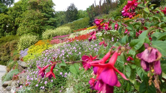 villa carlotta flowers