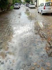 A cobblestone street in Puerto Vallarta. Step carefully!
