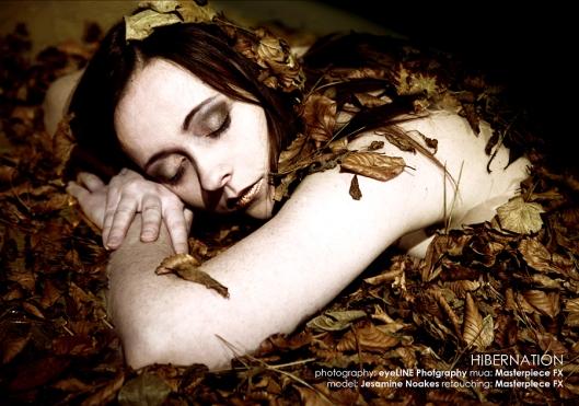 Hibernation 29-11-12