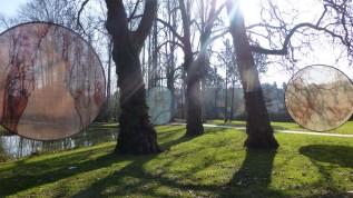 The da Vinci garden
